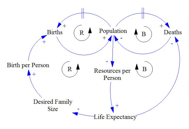 Population Model