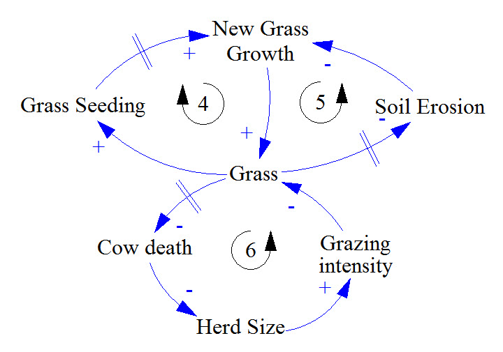 causal loop diagram quiz   systems  amp  us     the following model shows the interaction between cows and the fields they graze  walk through each feedback loop and determine whether it is balancing