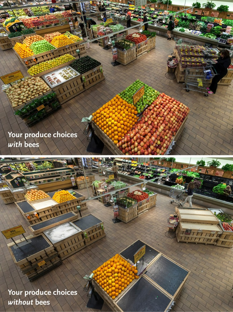 If you don't care about the honeybees, at least care about delicious foods! Image by Whole Foods.